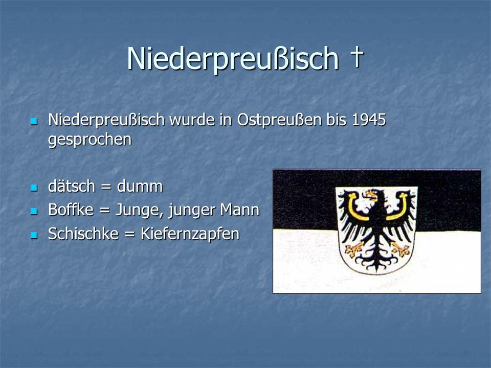 Niederpreußisch † Niederpreußisch wurde in Ostpreußen bis 1945 gesprochen. dätsch = dumm. Boffke = Junge, junger Mann.