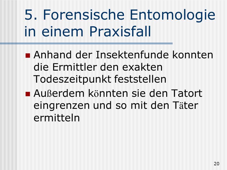 5. Forensische Entomologie in einem Praxisfall