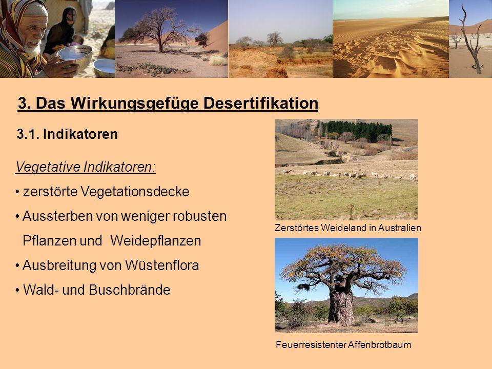 3. Das Wirkungsgefüge Desertifikation
