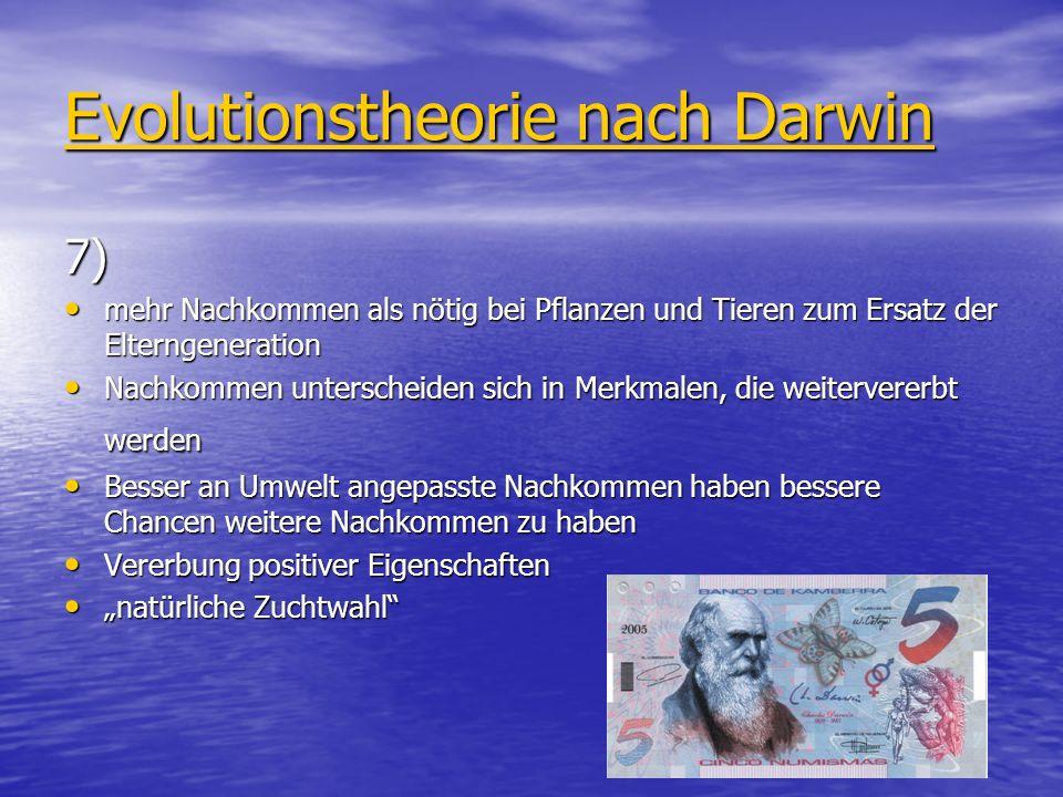 Evolutionstheorie nach Darwin