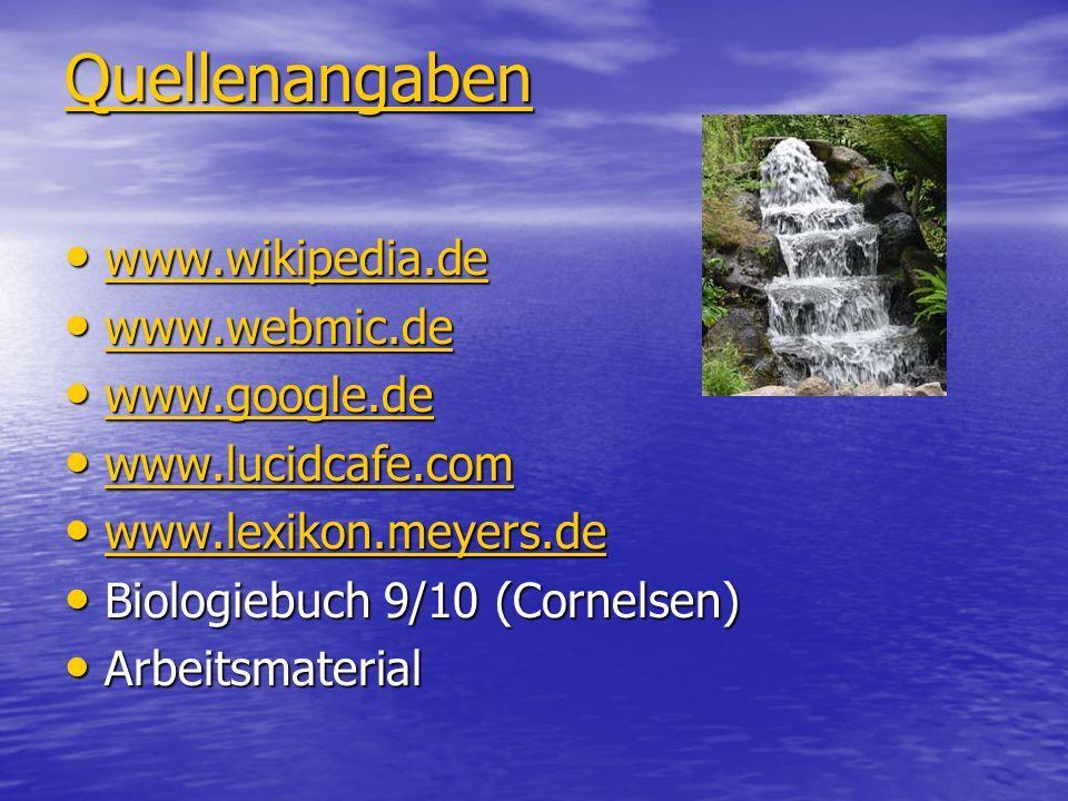 Quellenangaben www.wikipedia.de www.webmic.de www.google.de