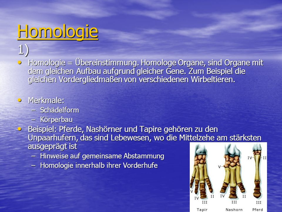 Homologie 1)