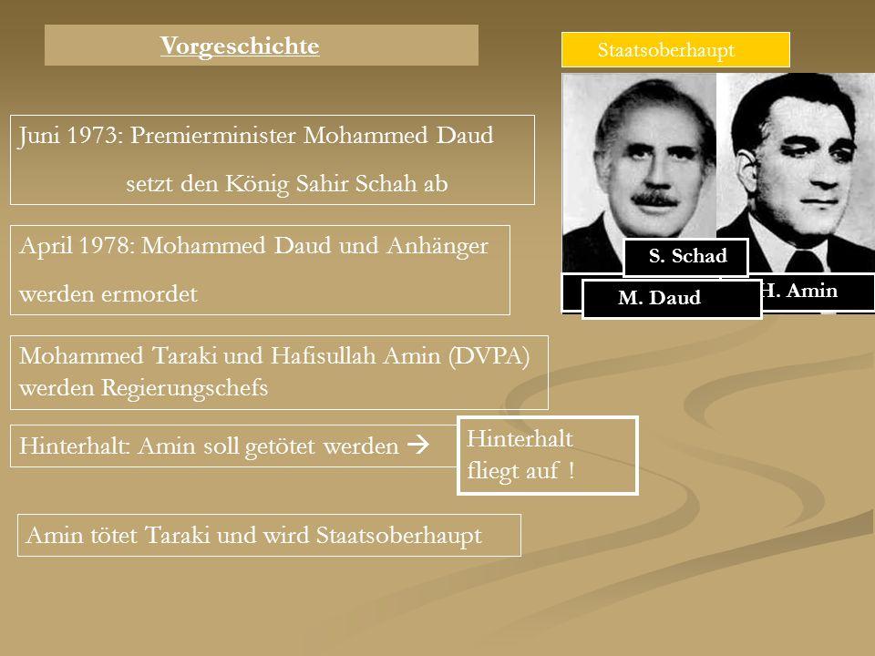 Juni 1973: Premierminister Mohammed Daud