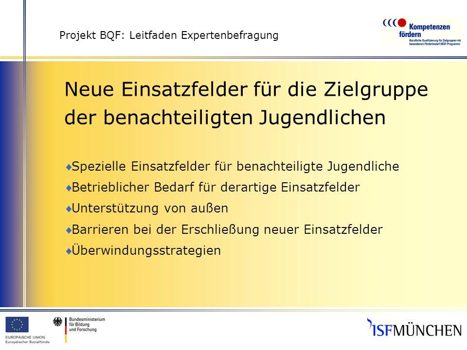 Projekt BQF: Leitfaden Expertenbefragung