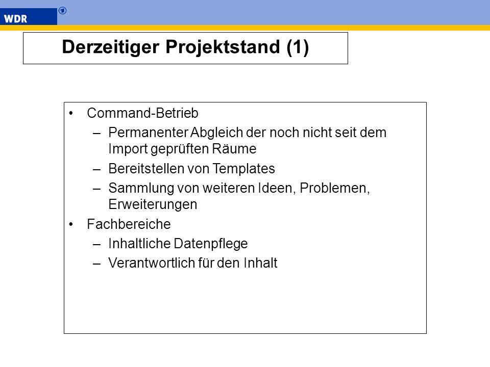 Derzeitiger Projektstand (1)