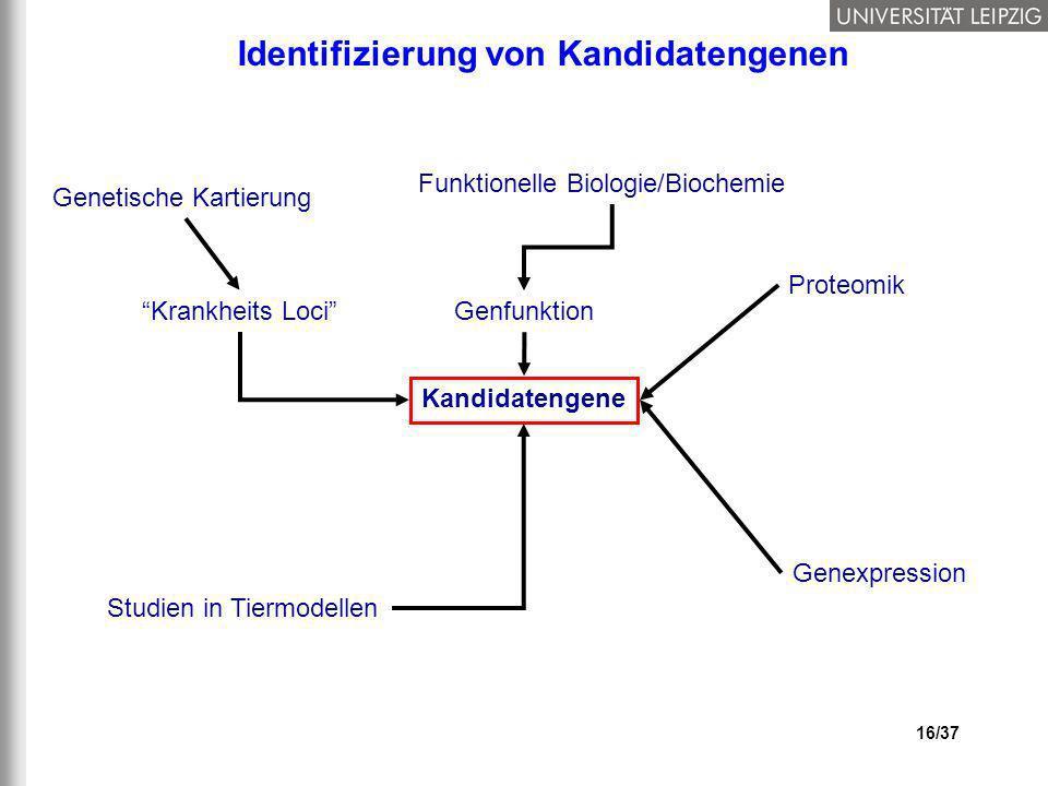 Identifizierung von Kandidatengenen