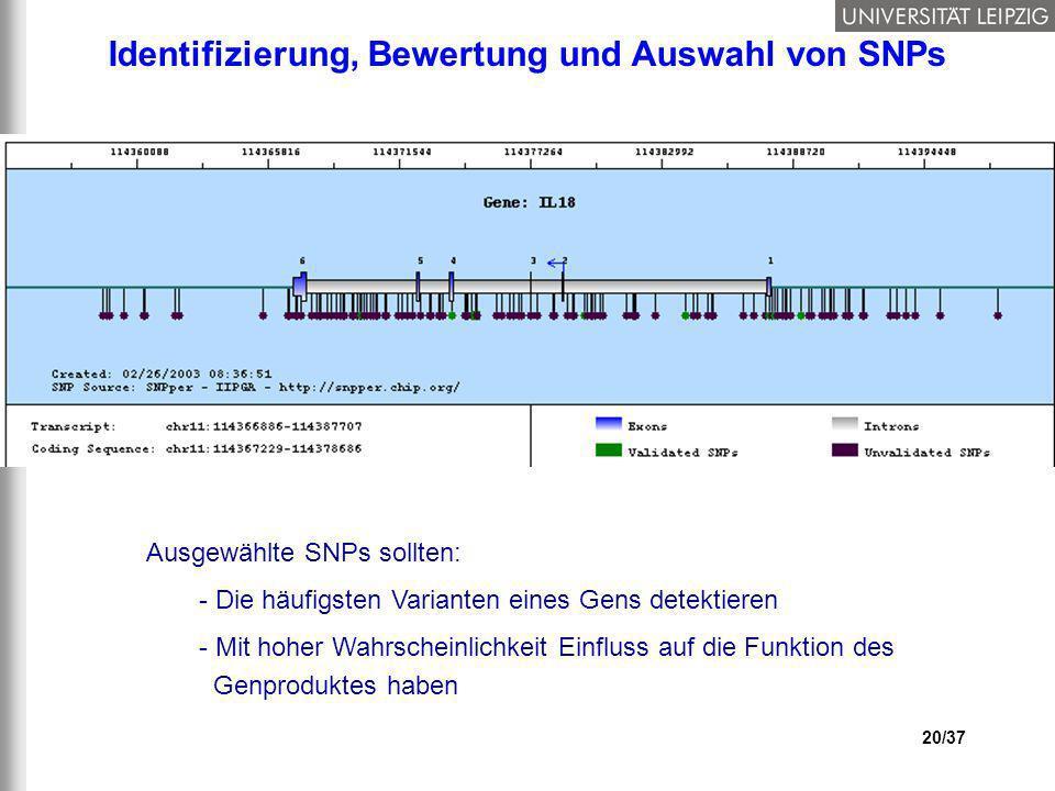 Identifizierung, Bewertung und Auswahl von SNPs