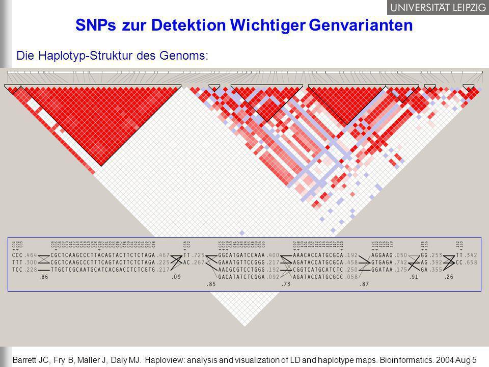 SNPs zur Detektion Wichtiger Genvarianten