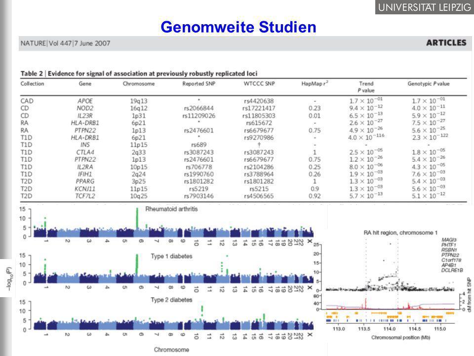 Genomweite Studien