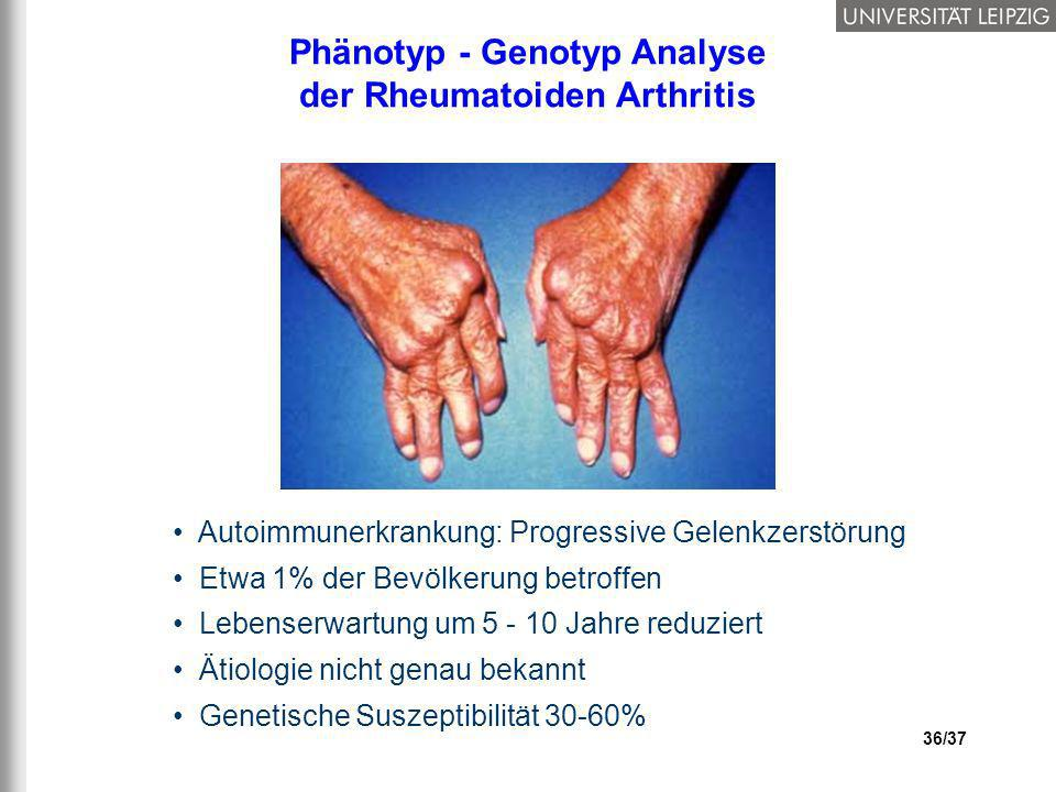 Phänotyp - Genotyp Analyse der Rheumatoiden Arthritis
