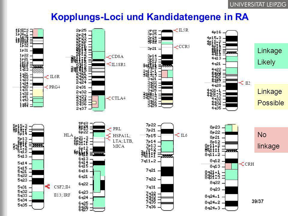 Kopplungs-Loci und Kandidatengene in RA