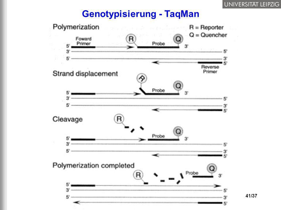 Genotypisierung - TaqMan