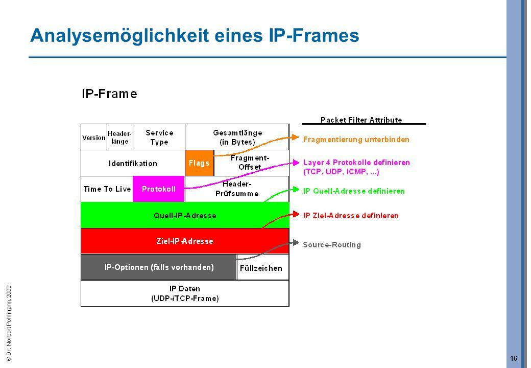 Analysemöglichkeit eines IP-Frames