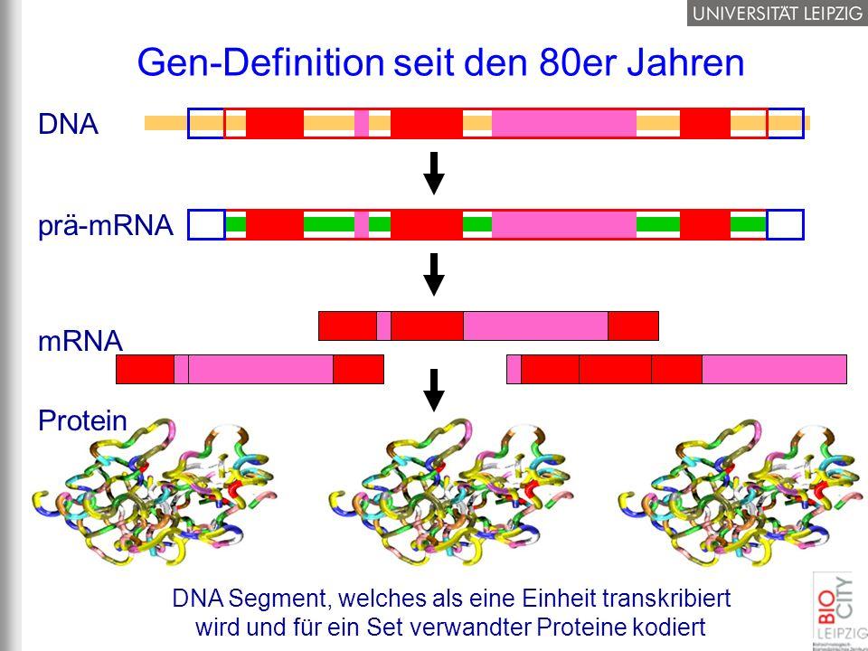Gen-Definition seit den 80er Jahren