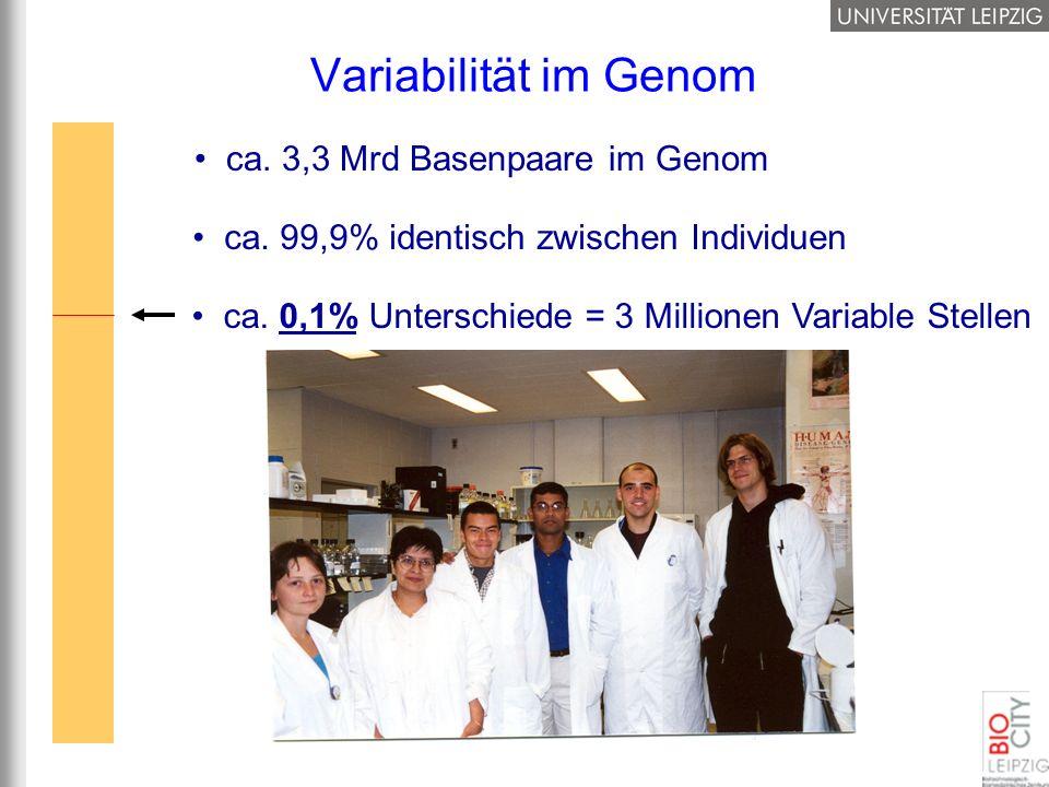 Variabilität im Genom ca. 3,3 Mrd Basenpaare im Genom
