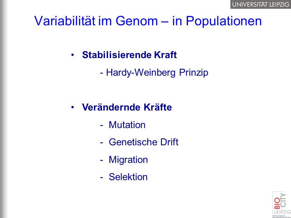 Variabilität im Genom – in Populationen