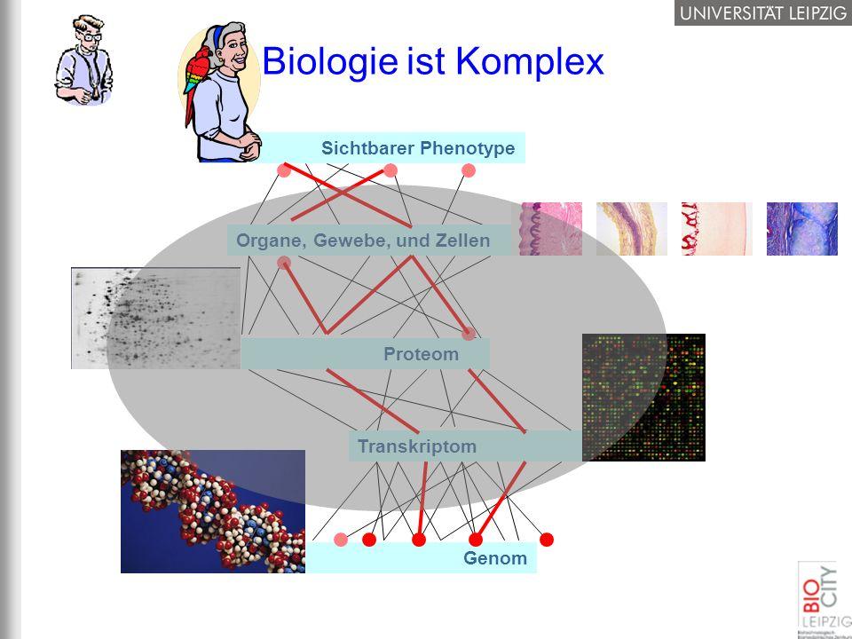Biologie ist Komplex Sichtbarer Phenotype Organe, Gewebe, und Zellen
