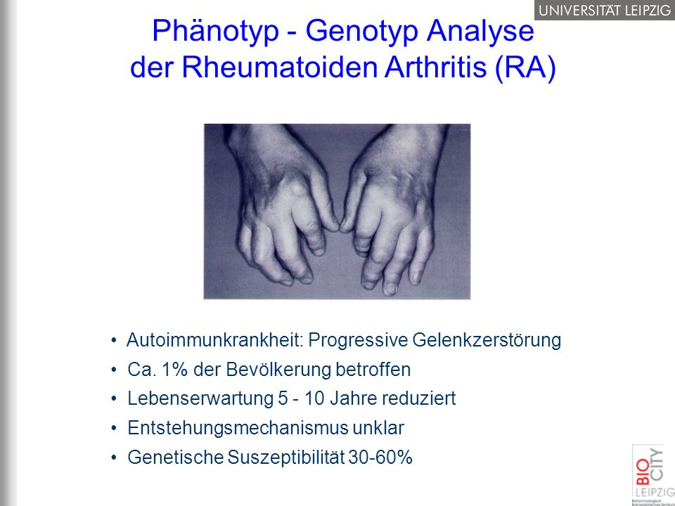 Phänotyp - Genotyp Analyse der Rheumatoiden Arthritis (RA)