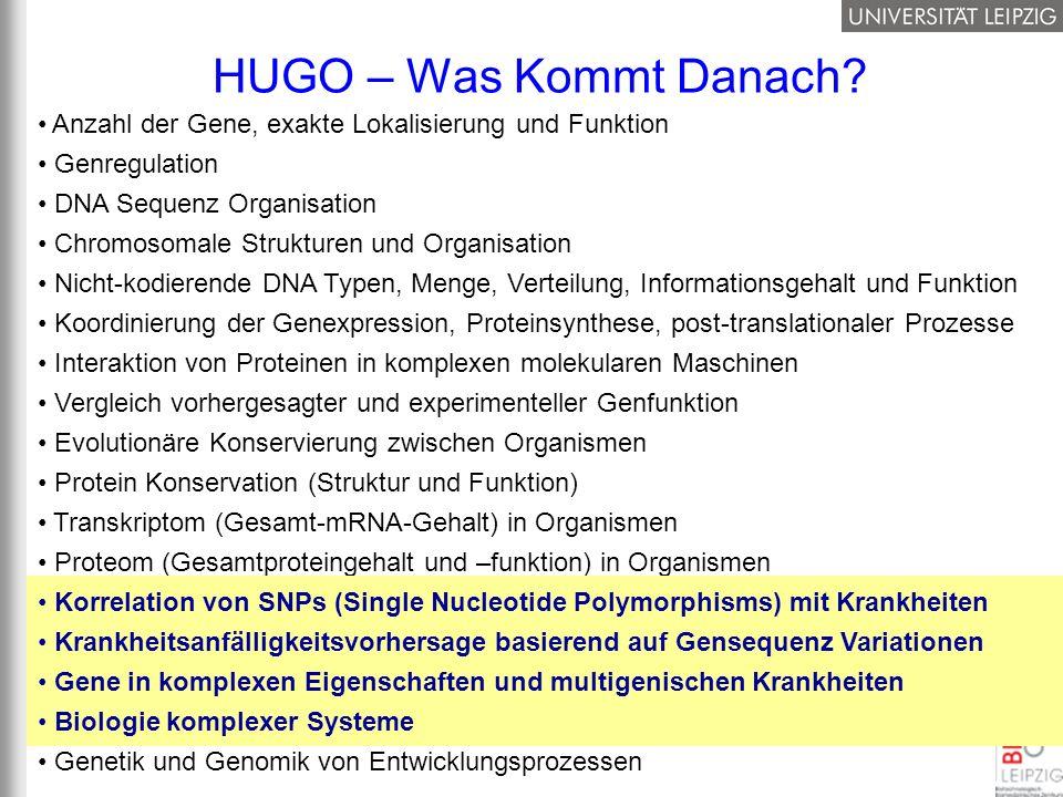 HUGO – Was Kommt Danach Anzahl der Gene, exakte Lokalisierung und Funktion. Genregulation. DNA Sequenz Organisation.