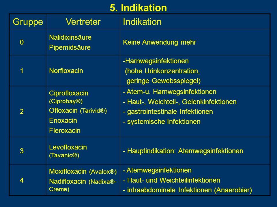 5. Indikation Gruppe Vertreter Indikation Nalidixinsäure Pipemidsäure