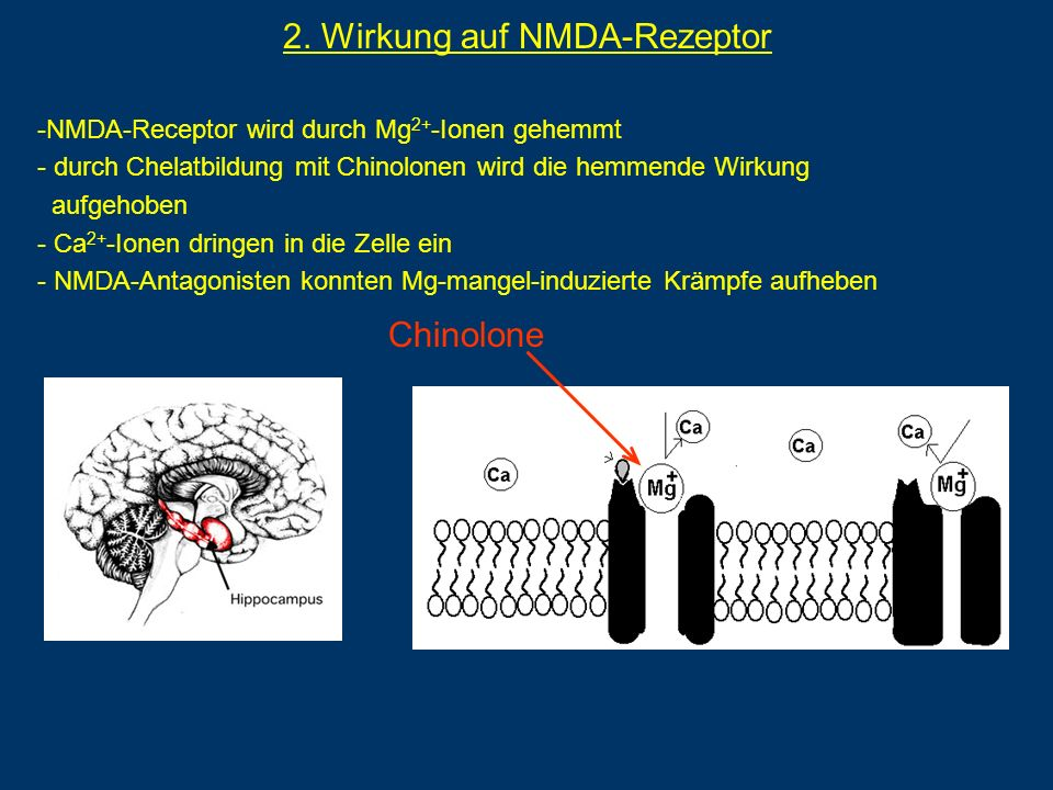 2. Wirkung auf NMDA-Rezeptor