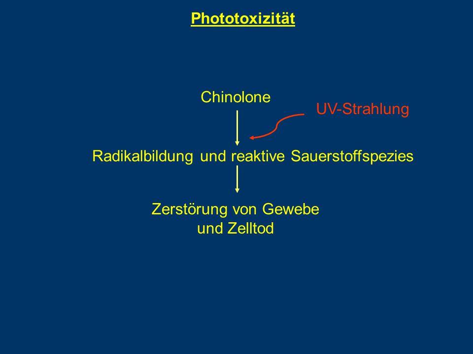 Phototoxizität Chinolone. Radikalbildung und reaktive Sauerstoffspezies. UV-Strahlung. Zerstörung von Gewebe.