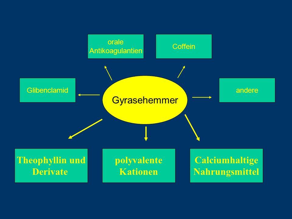 Theophyllin und polyvalente Kationen Calciumhaltige Nahrungsmittel
