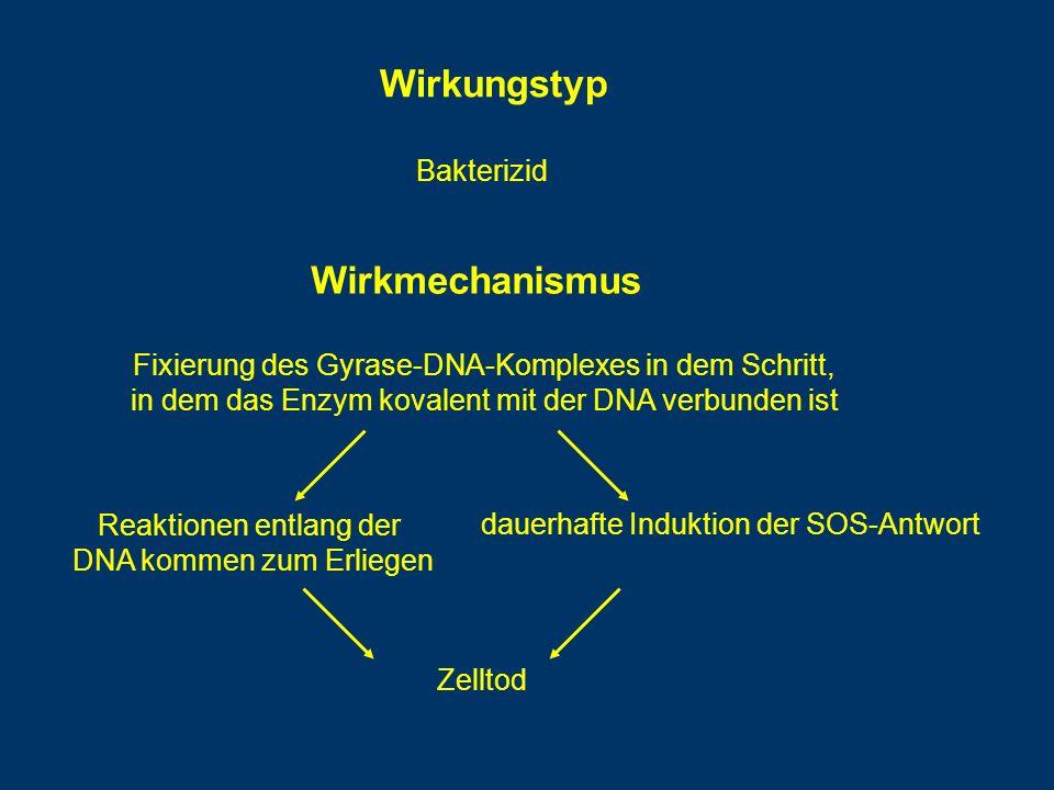 Wirkungstyp Wirkmechanismus Bakterizid