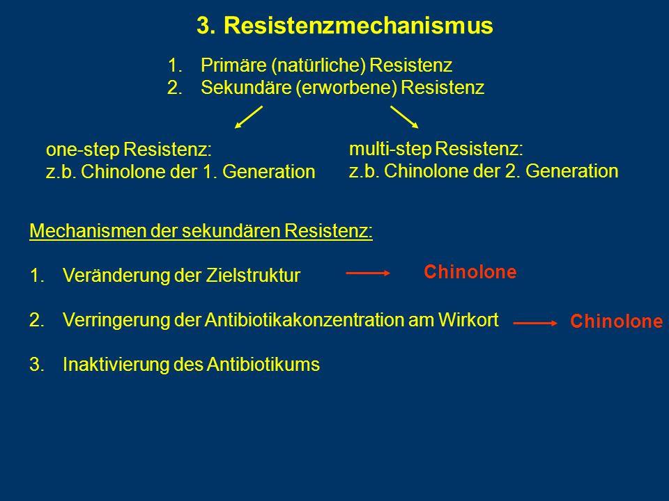 3. Resistenzmechanismus