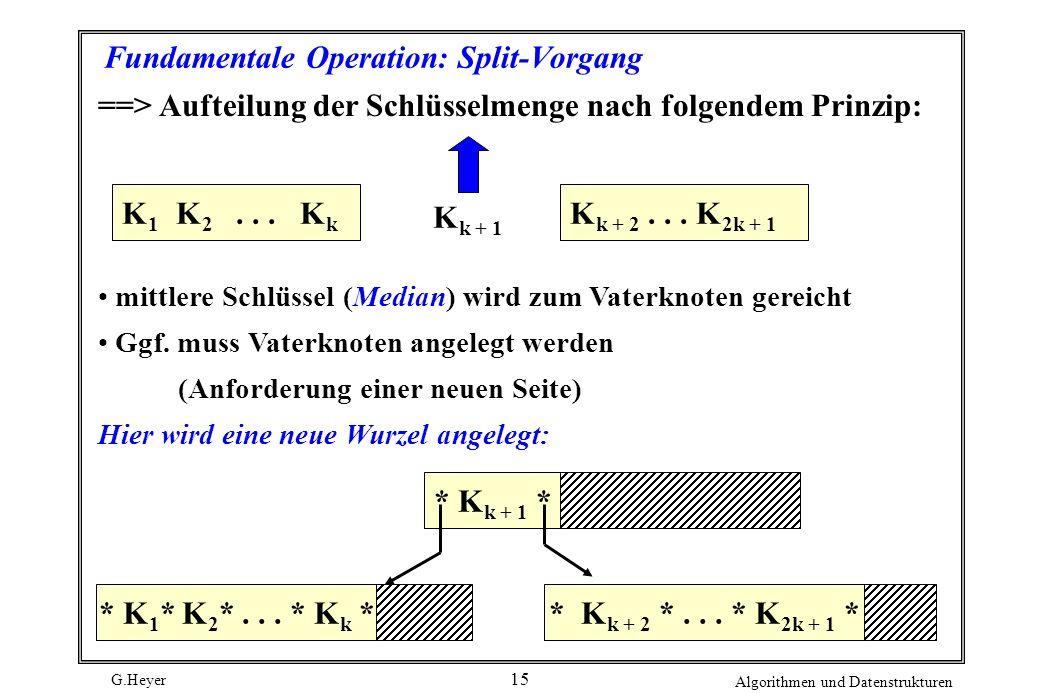 Fundamentale Operation: Split-Vorgang