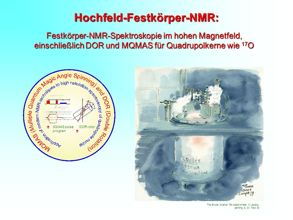 Hochfeld-Festkörper-NMR: