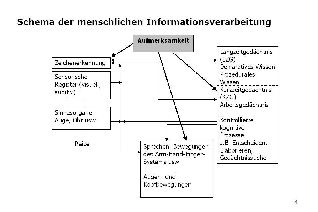Schema der menschlichen Informationsverarbeitung