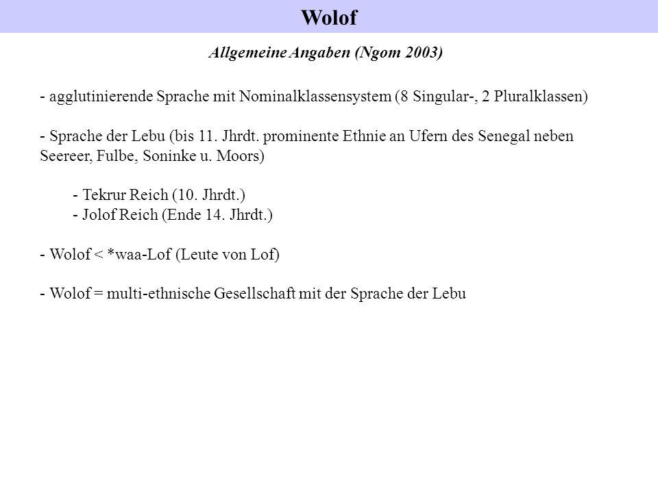 Allgemeine Angaben (Ngom 2003)