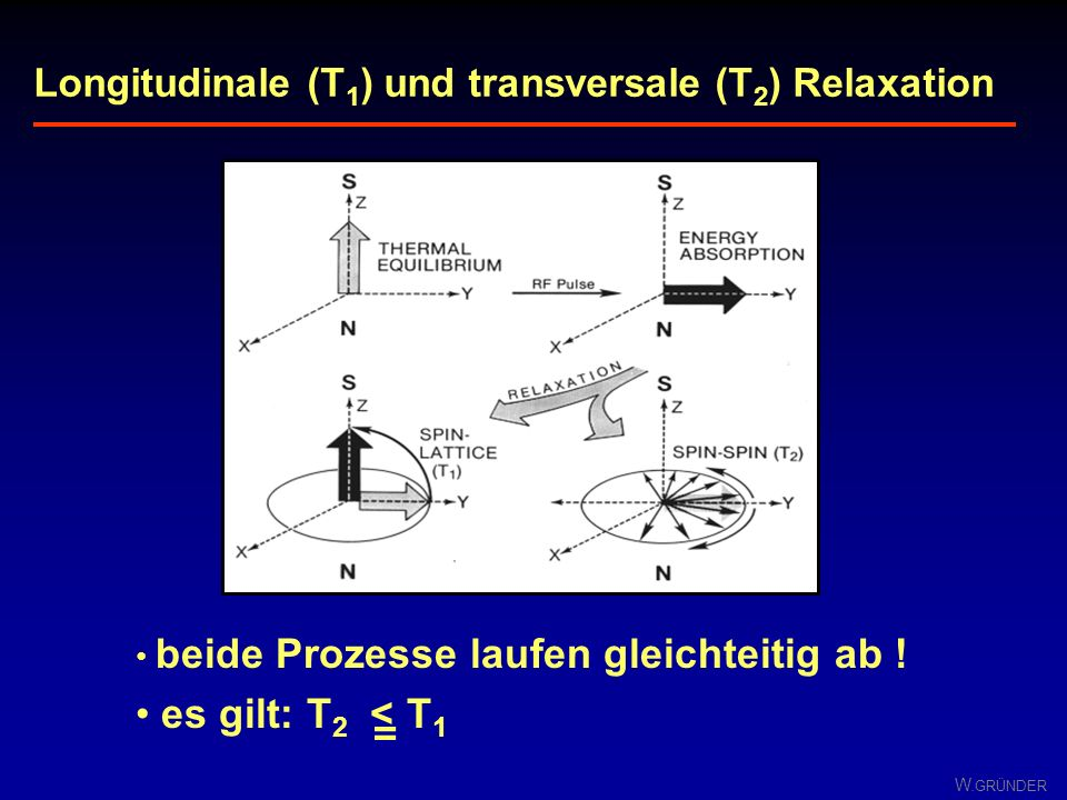 Longitudinale (T1) und transversale (T2) Relaxation