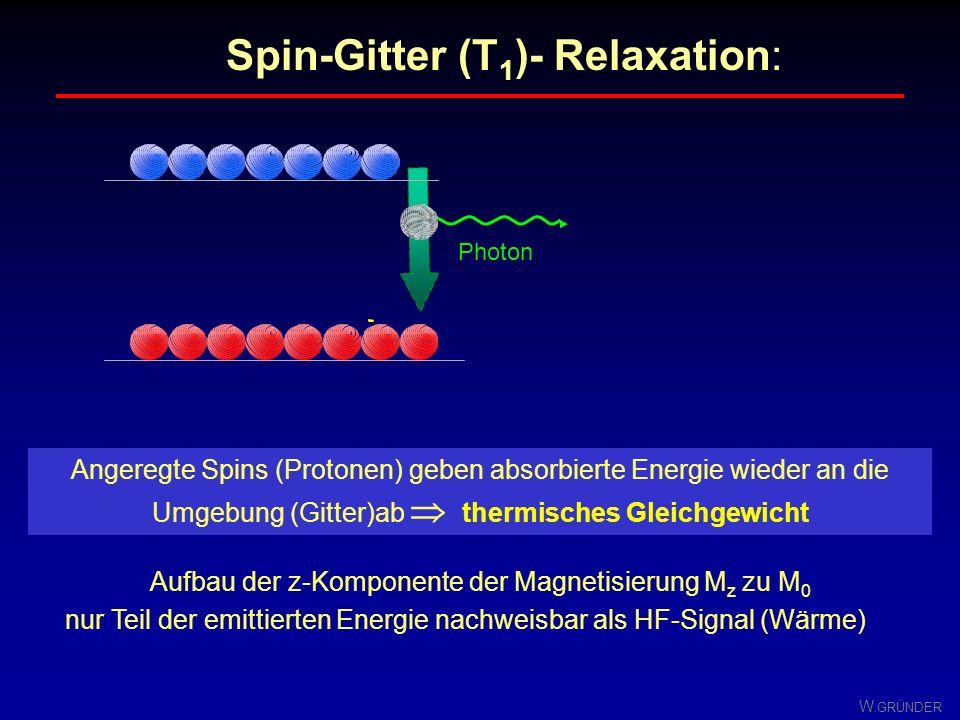 Aufbau der z-Komponente der Magnetisierung Mz zu M0