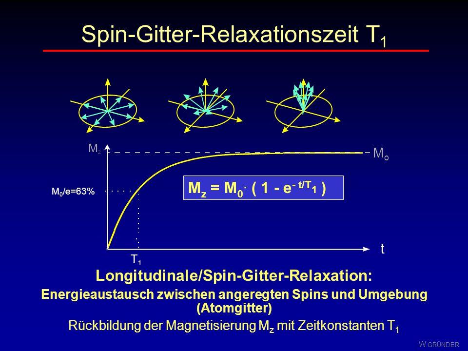 Spin-Gitter-Relaxationszeit T1