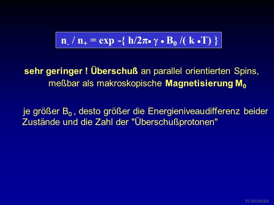 n- / n+ = exp -{ h/2π· g · B0 /( k ·T) }
