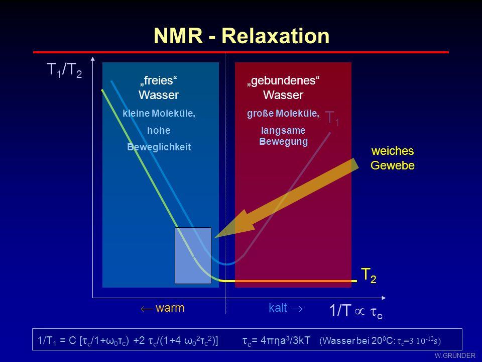 "NMR - Relaxation T1/T2 T1 T2 1/T  c kalt   warm ""freies Wasser"