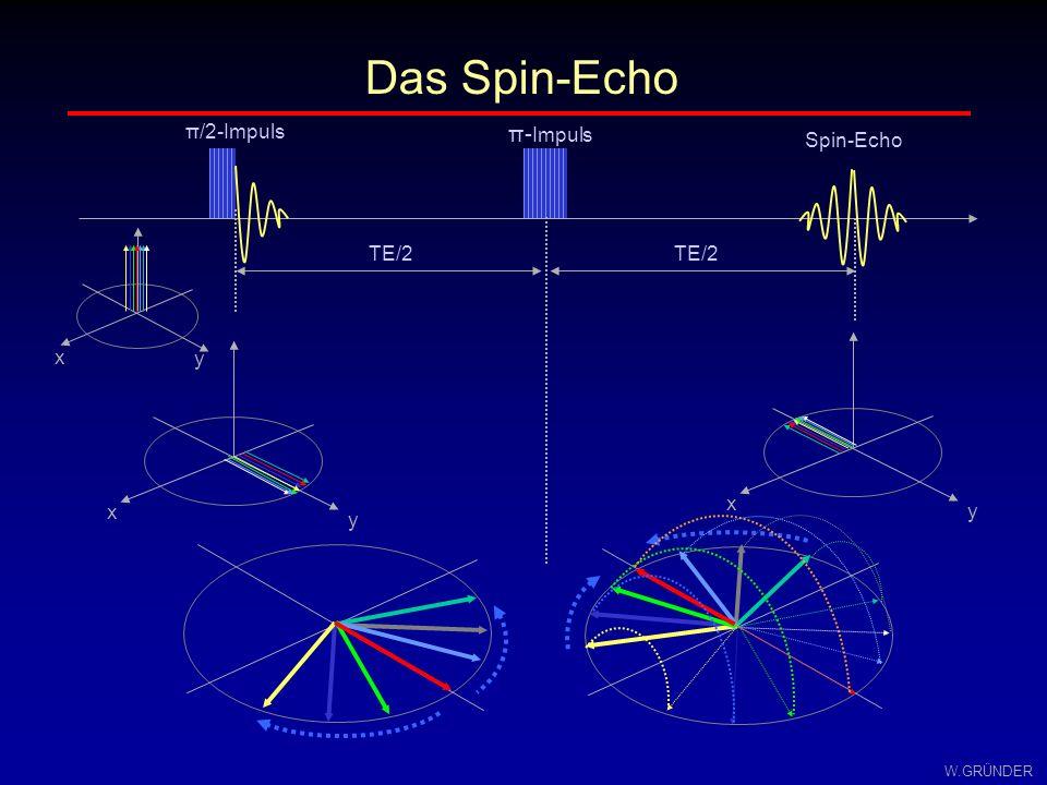 Das Spin-Echo π/2-Impuls π-Impuls Spin-Echo x y x y x y TE/2 TE/2