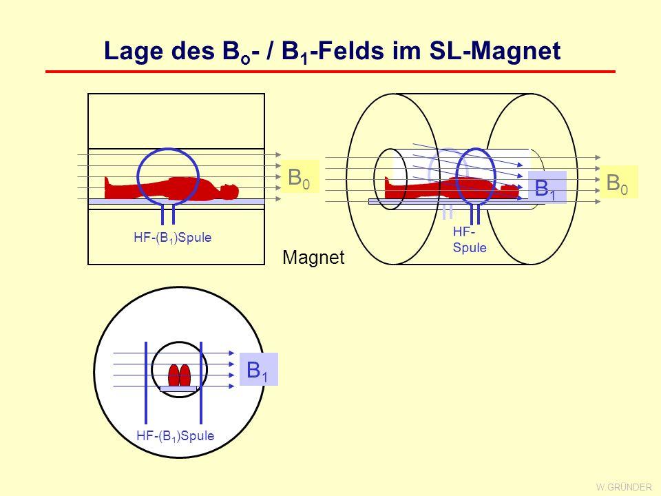 Lage des Bo- / B1-Felds im SL-Magnet