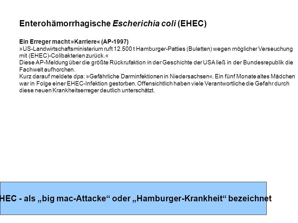 """EHEC - als """"big mac-Attacke oder """"Hamburger-Krankheit bezeichnet"""