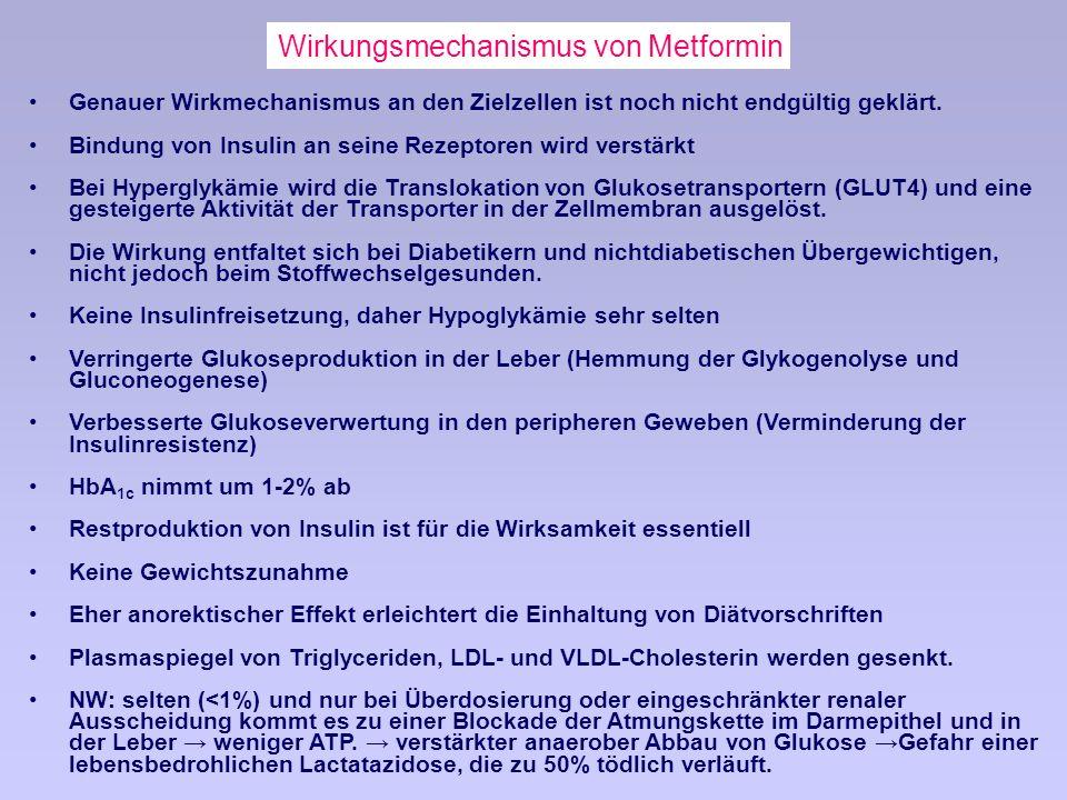 Wirkungsmechanismus von Metformin