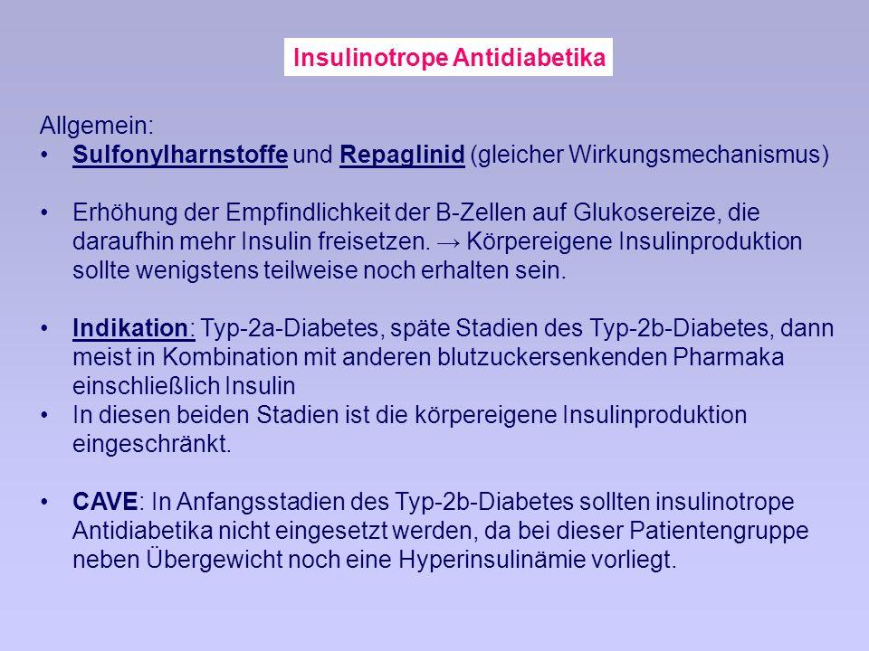 Insulinotrope Antidiabetika