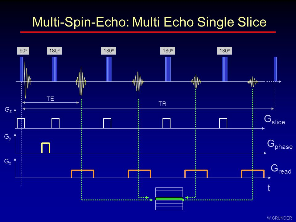 Multi-Spin-Echo: Multi Echo Single Slice