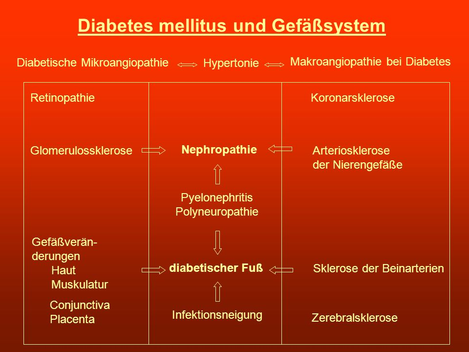 Diabetes mellitus und Gefäßsystem