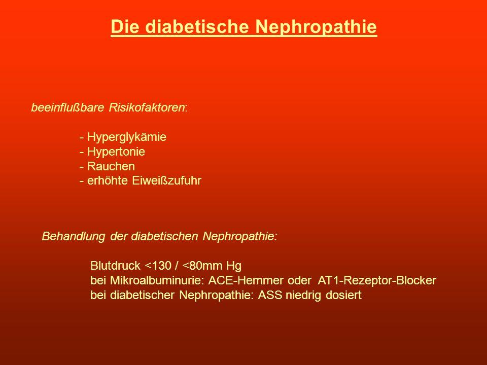 Die diabetische Nephropathie