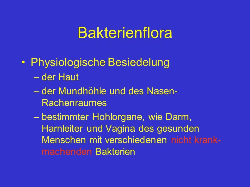 Bakterienflora Physiologische Besiedelung der Haut