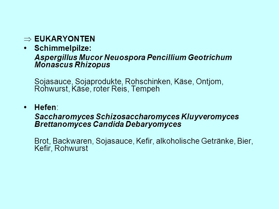 EUKARYONTEN • Schimmelpilze: Aspergillus Mucor Neuospora Pencillium Geotrichum Monascus Rhizopus.