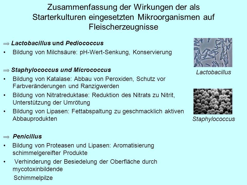 Zusammenfassung der Wirkungen der als Starterkulturen eingesetzten Mikroorganismen auf Fleischerzeugnisse