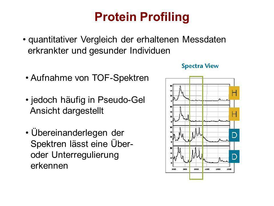 Protein Profiling quantitativer Vergleich der erhaltenen Messdaten